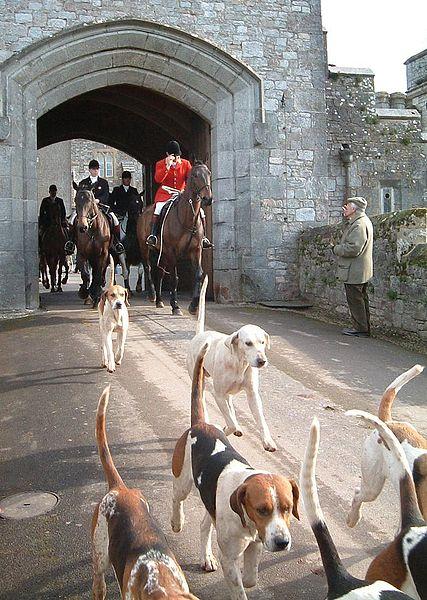 Equestrian dating uk