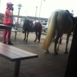 Horse in McDonald drive-thru turned to ride-thru